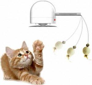 zábavná hračka pre mačky