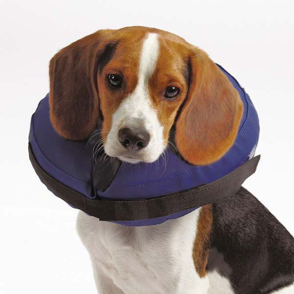 Ochranný golier pre psov
