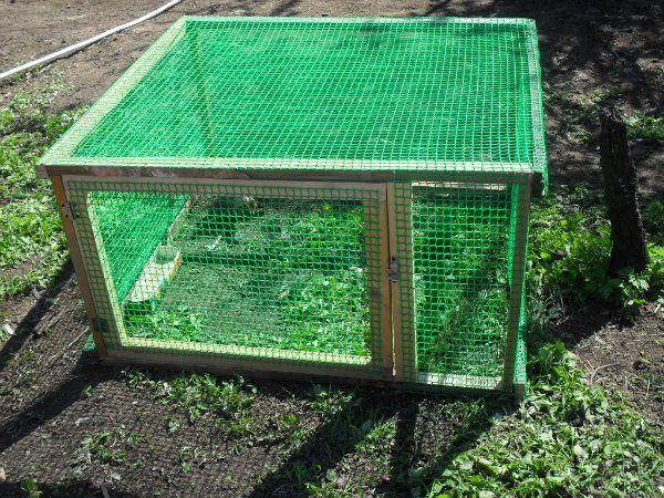 cușcă din lemn pentru puii de găină