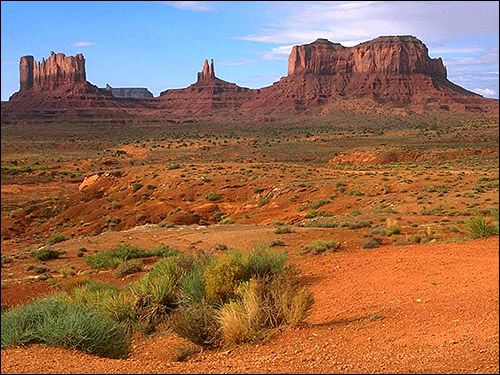Red semi-deșert. Foto, Foto